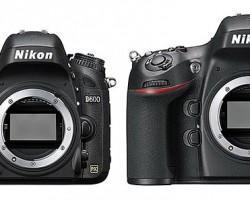 Firmware update for Nikon D600 and D800 released